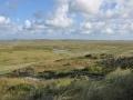 Texel2014 (530).jpg